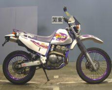 Yamaha TT250R RAID